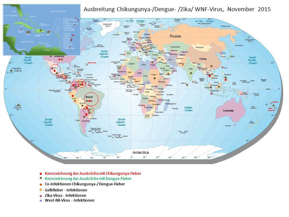 Ausbreitung Chikungunya-/Dengue- /Zika/ WNF-Virus, November 2015 Bermuda Samoa Cook- Islands Kennzeichnung der Ausbrüche mit Chikungunya-Fieber Kennzeichnung der Ausbrüche mit Dengue-Fieber Co-Infektionen Chikungunya-/ Dengue-Fieber Gelbfieber - Infektionen Zika-Virus - Infektionen West-Nil-Virus - Infektionen Kap Verde