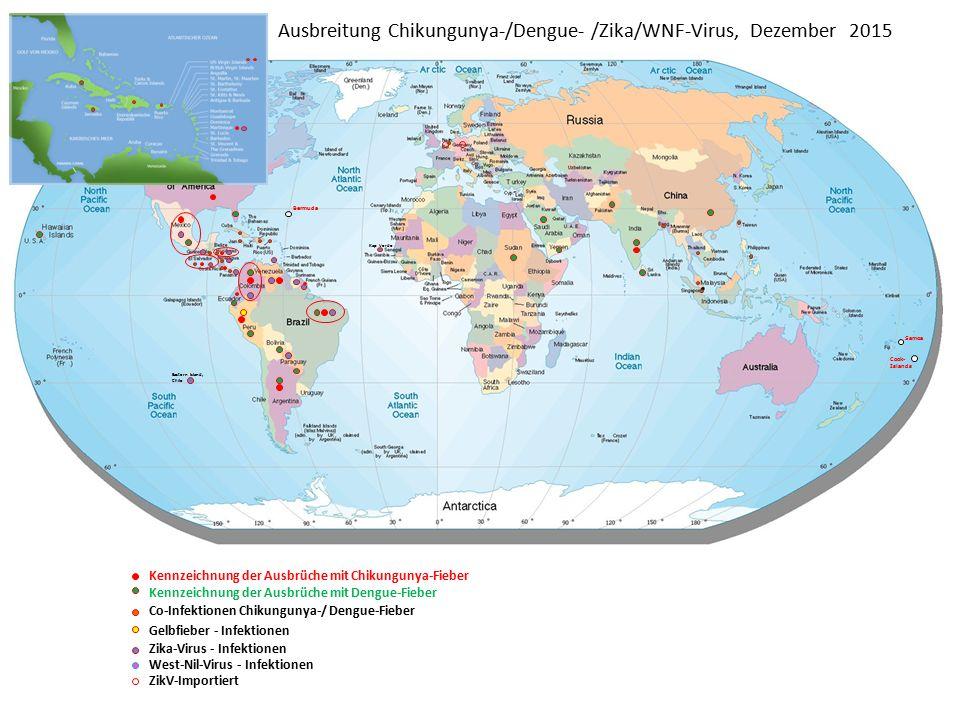 Ausbreitung Chikungunya-/Dengue- /Zika/WNF-Virus, Dezember 2015 Bermuda Samoa Cook- Islands Kennzeichnung der Ausbrüche mit Chikungunya-Fieber Kennzeichnung der Ausbrüche mit Dengue-Fieber Co-Infektionen Chikungunya-/ Dengue-Fieber Gelbfieber - Infektionen Zika-Virus - Infektionen West-Nil-Virus - Infektionen Kap Verde Eastern Island, Chile ZikV-Importiert
