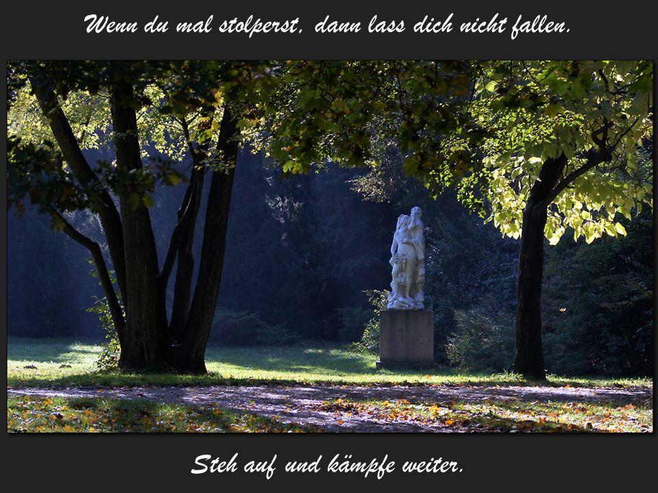 Auch wenn kein Land weit und breit in Sicht ist, nur nie aufgeben, sonst erreicht man das Ufer nie!