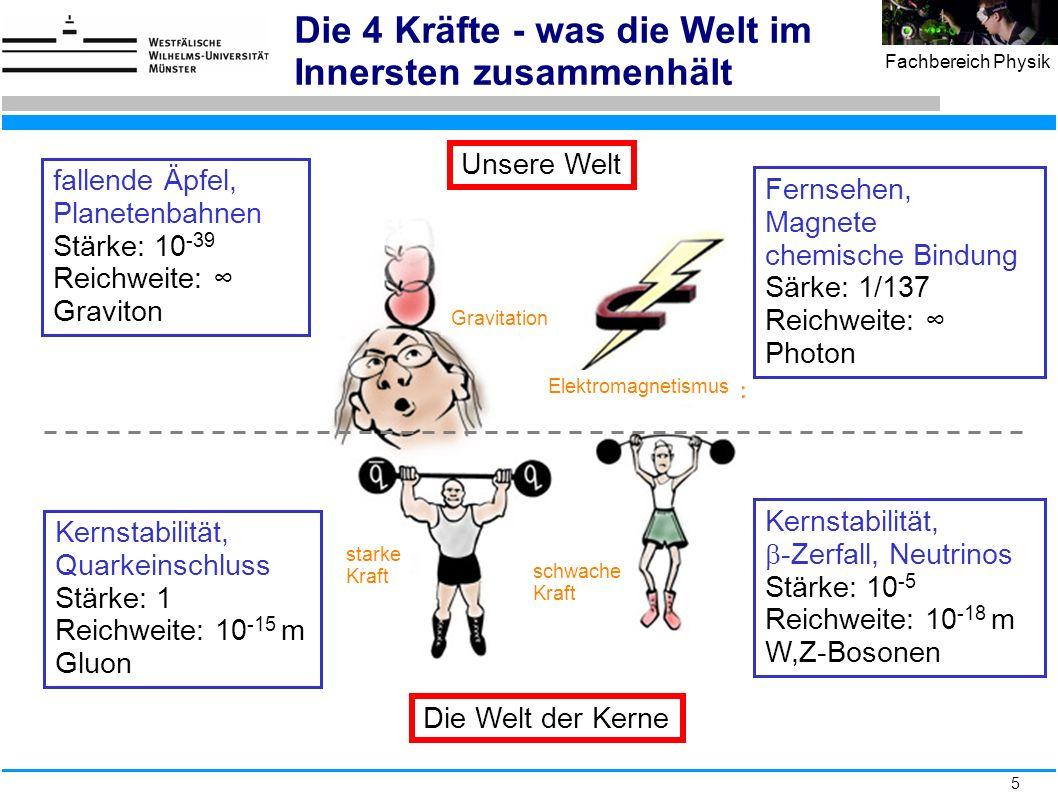 46 Fachbereich Physik Elektromagnetische Schauer 1 X 0 2 X 0 3 X 0 4 X 0 elektromagnetischer Schauer: