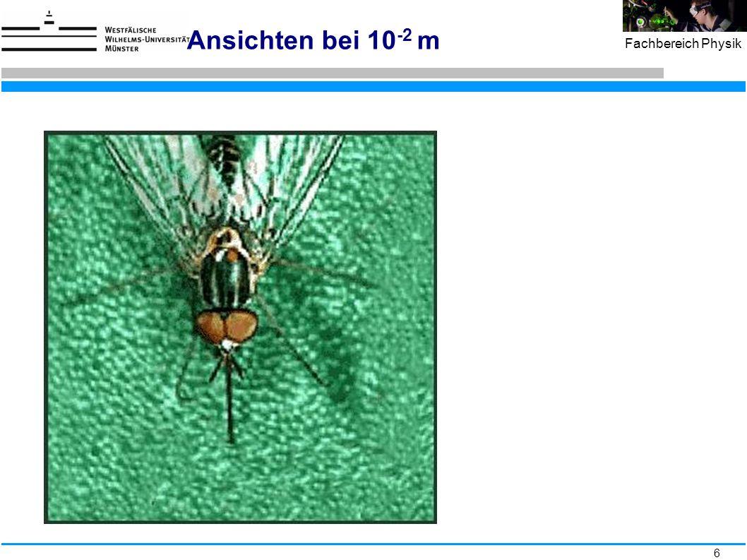 47 Fachbereich Physik Elektromagnetischer Schauer in Nebelkammer