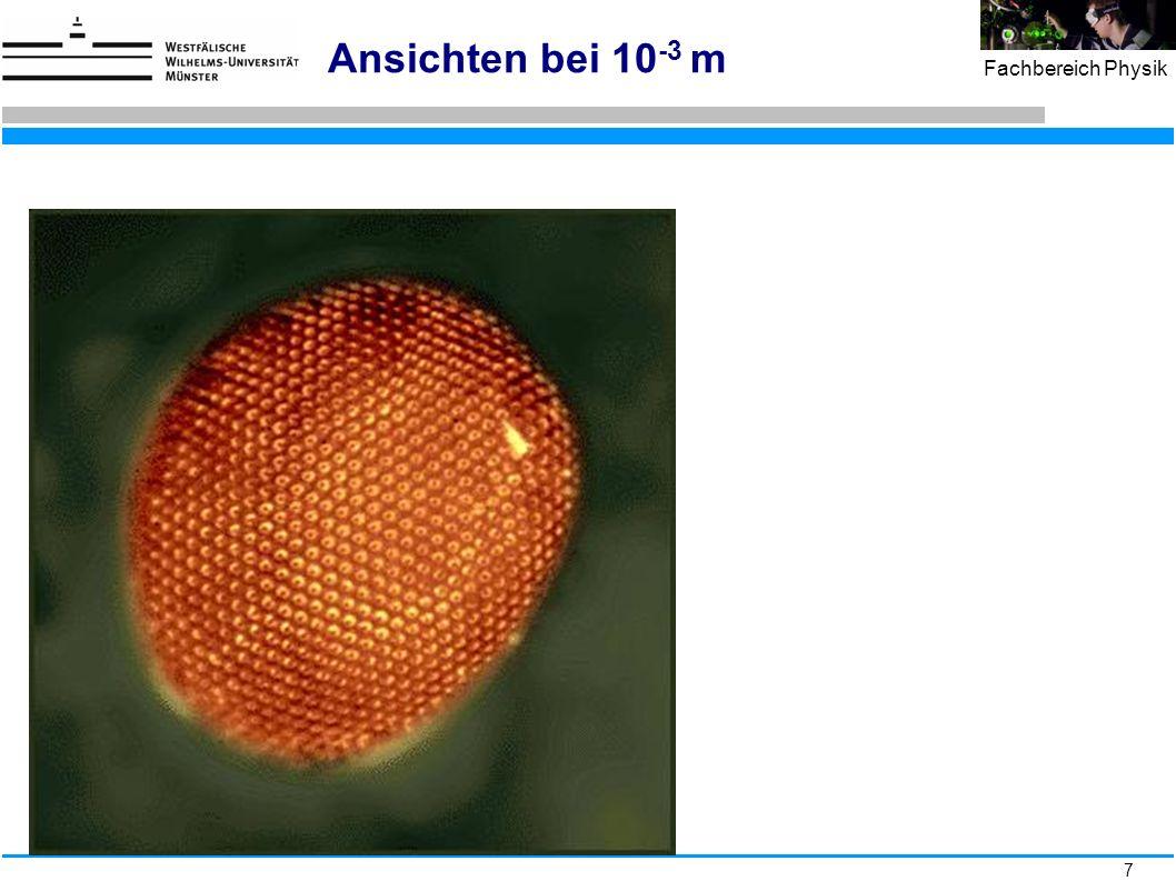 38 Fachbereich Physik Bethe-Bloch-Formel: Energieverlust geladener Teilchen in Materie x in g/cm 2
