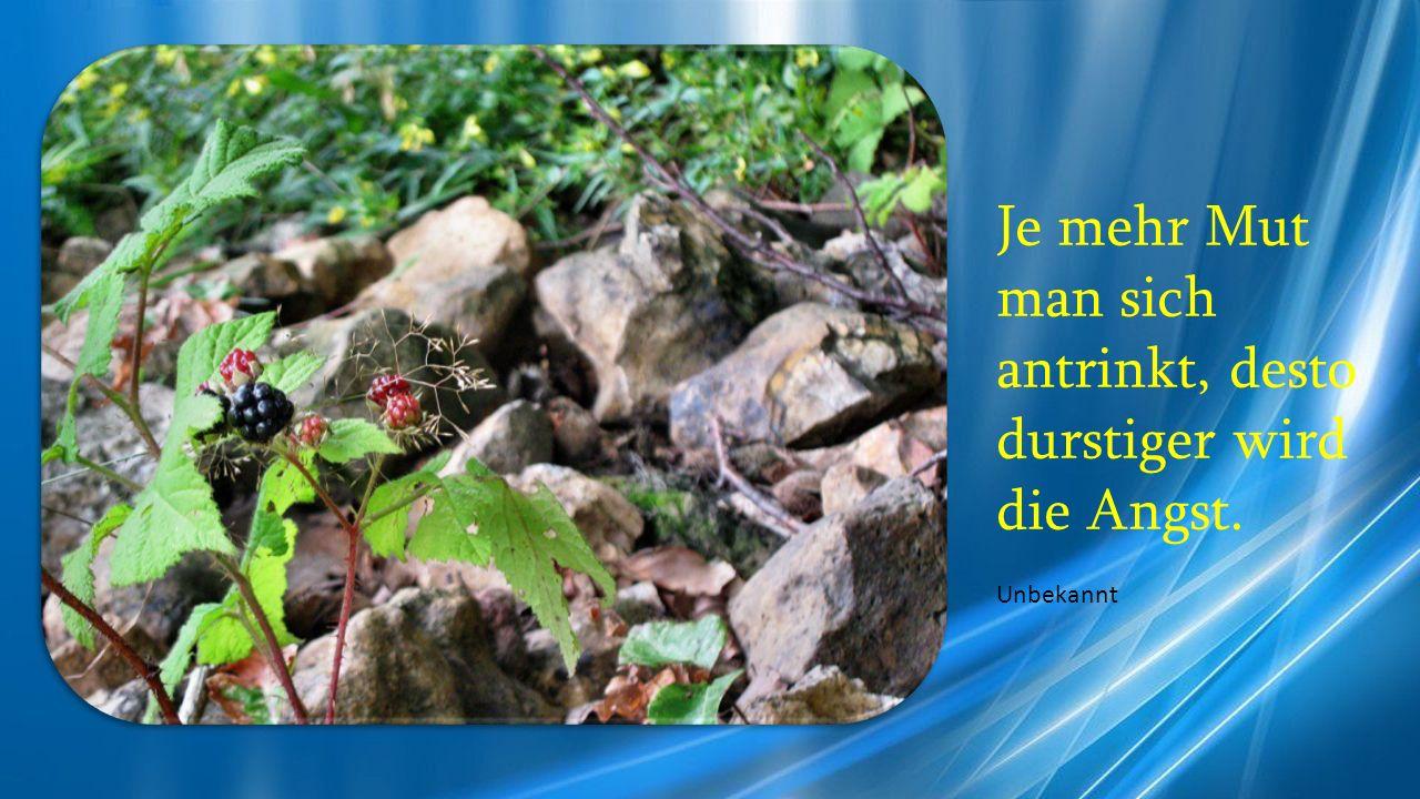 Ohne Mut trägt die Weisheit keine Früchte. Baltasar Gracián y Morales S.J.