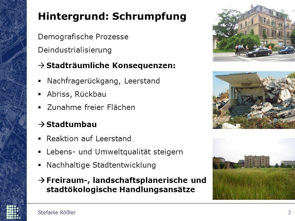 Stefanie Rößler3 Demografische Prozesse Deindustrialisierung  Nachfragerückgang, Leerstand  Abriss, Rückbau  Zunahme freier Flächen  Reaktion auf