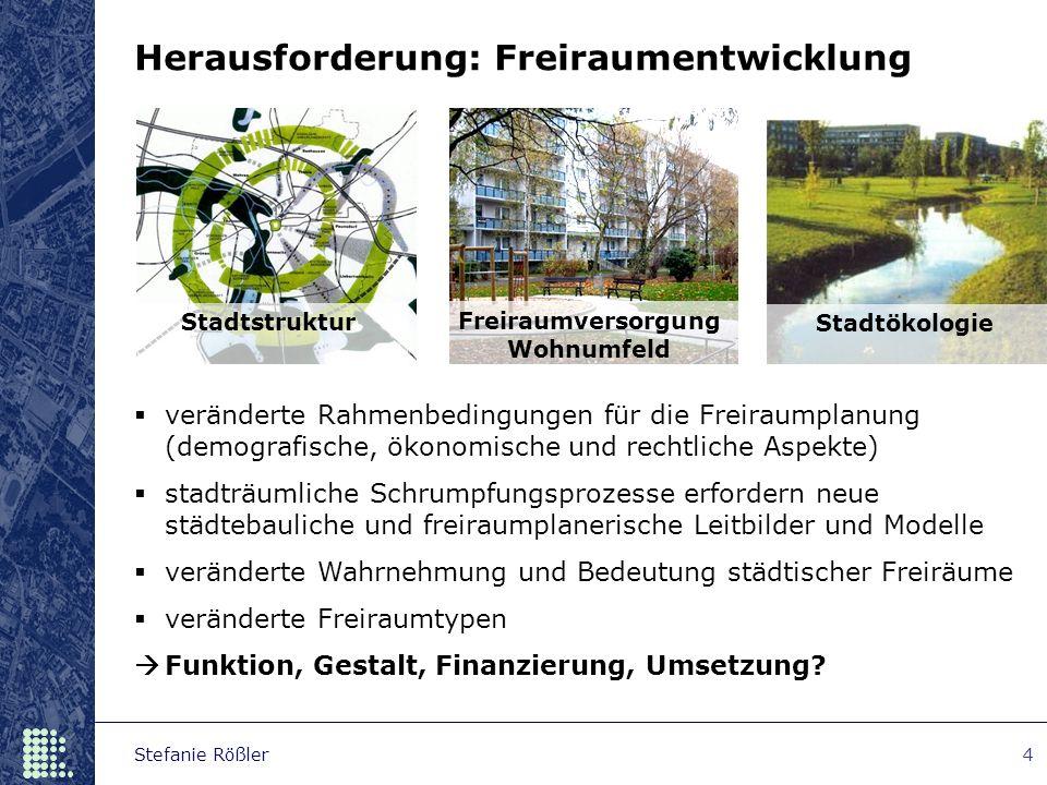 Stefanie Rößler4 Stadtstruktur Freiraumversorgung Wohnumfeld Stadtökologie Herausforderung: Freiraumentwicklung  veränderte Rahmenbedingungen für die