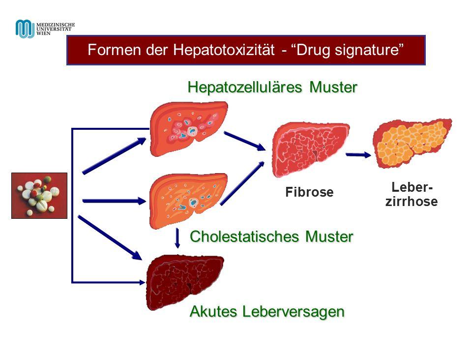 Hepatozelluläres Muster Cholestatisches Muster Akutes Leberversagen Fibrose Leber- zirrhose Formen der Hepatotoxizität - Drug signature