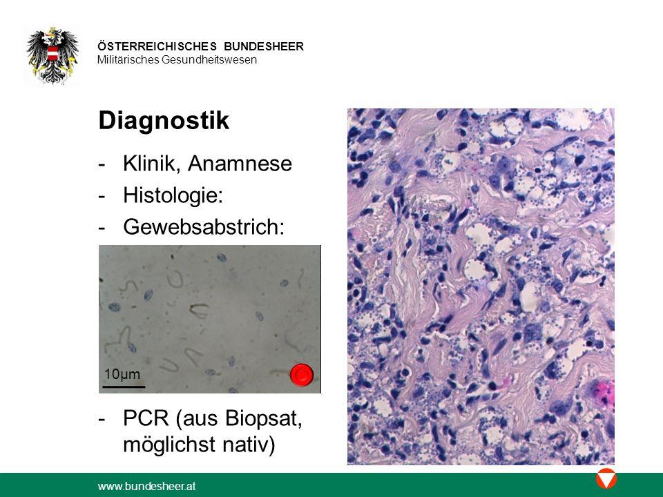 www.bundesheer.at ÖSTERREICHISCHES BUNDESHEER Militärisches Gesundheitswesen Diagnostik -Klinik, Anamnese -Histologie: -Gewebsabstrich: -PCR (aus Biopsat, möglichst nativ) 10µm