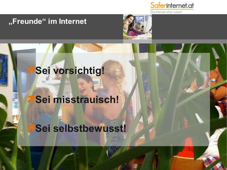 """""""Freunde im Internet  Sei vorsichtig!  Sei misstrauisch!  Sei selbstbewusst!"""