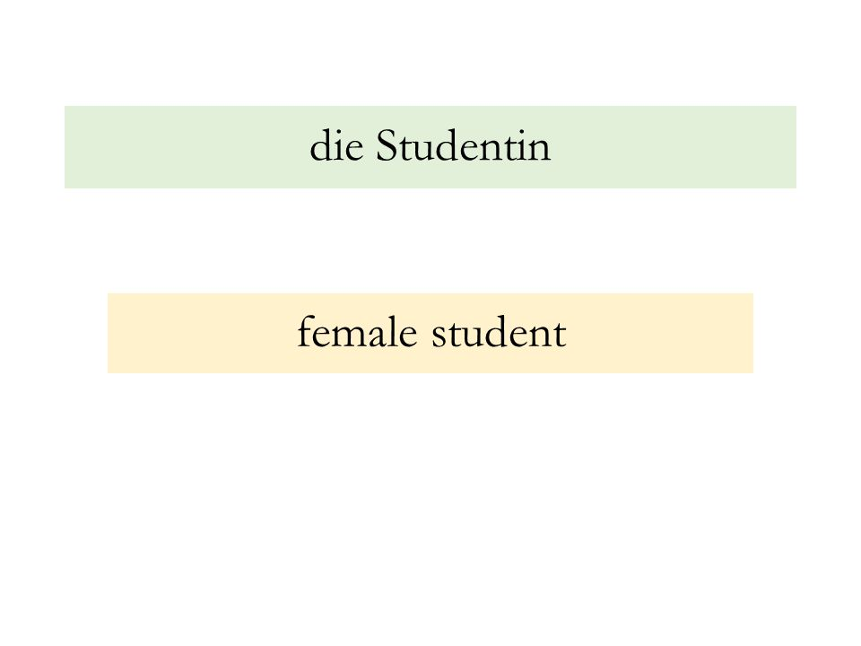 die Studentin female student