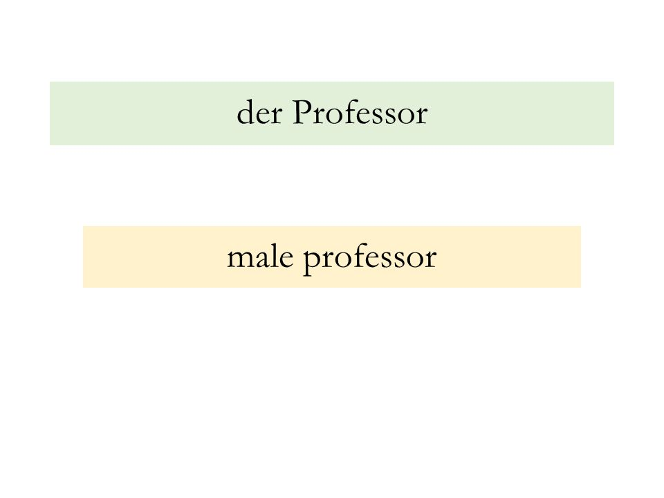 der Professor male professor