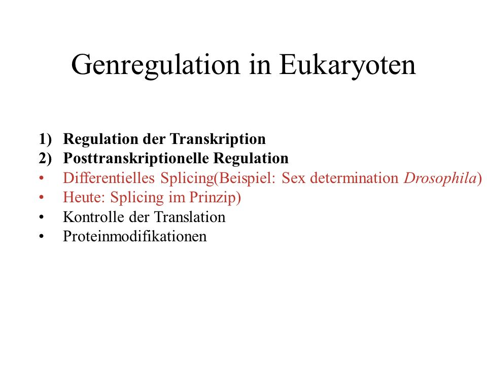 Genregulation in Eukaryoten 1)Regulation der Transkription 2)Posttranskriptionelle Regulation Differentielles Splicing(Beispiel: Sex determination Dro