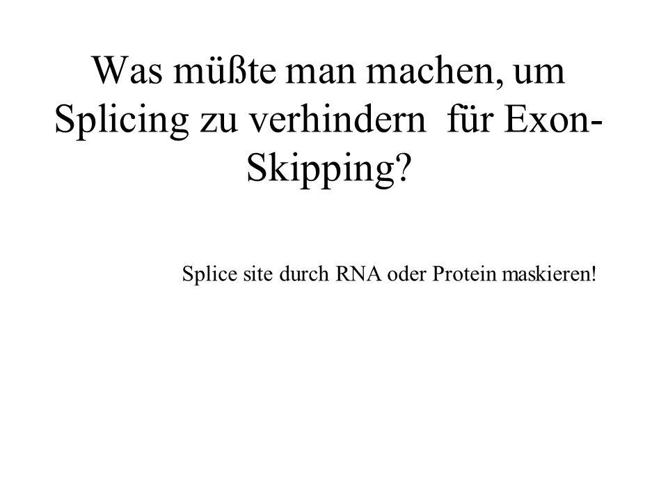 Was müßte man machen, um Splicing zu verhindern für Exon- Skipping? Splice site durch RNA oder Protein maskieren!