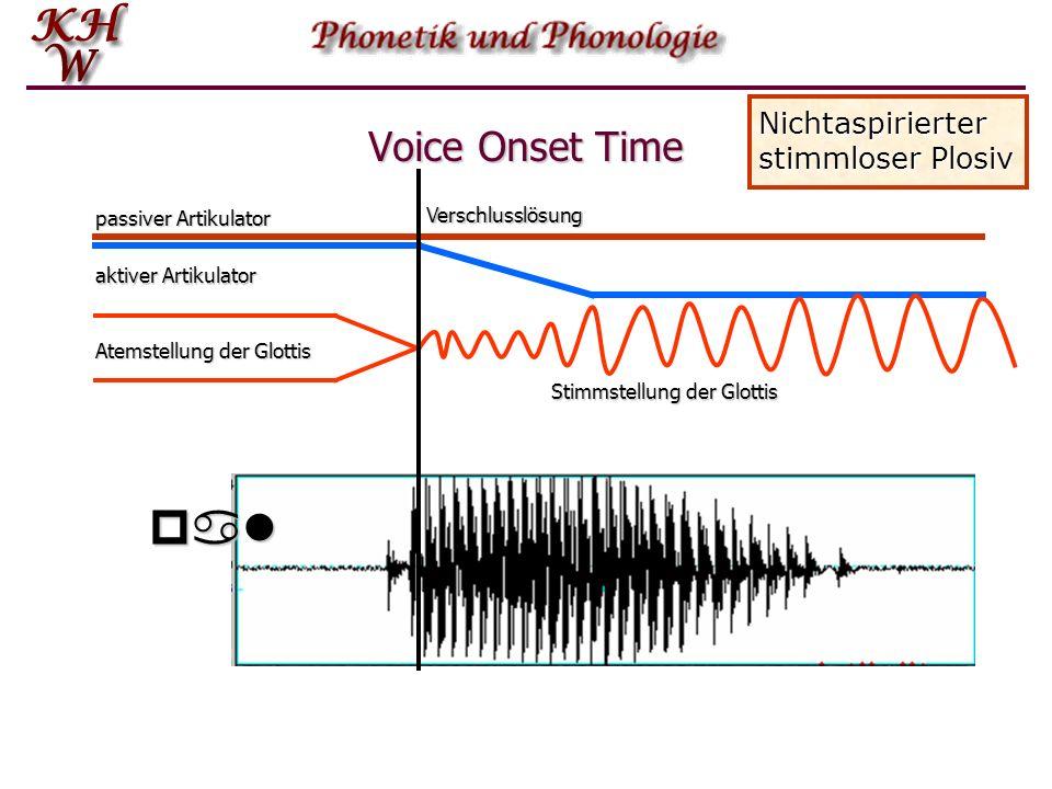 Voice Onset Time passiver Artikulator aktiver Artikulator Atemstellung der Glottis Stimmstellung der Glottis Nichtaspirierter stimmloser Plosiv Versch