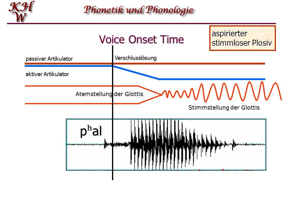 Voice Onset Time passiver Artikulator aktiver Artikulator Atemstellung der Glottis Stimmstellung der Glottis Nichtaspirierter stimmloser Plosiv pal Ve