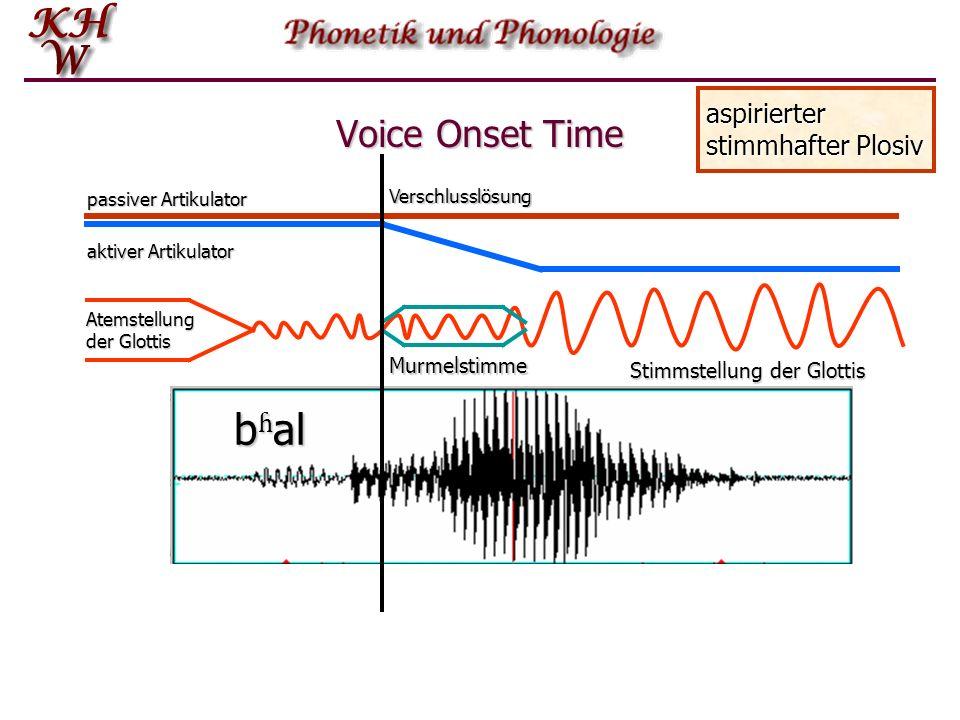 Voice Onset Time passiver Artikulator aktiver Artikulator nicht-aspirierter stimmhafter Plosiv bal Atemstellung der Glottis Stimmstellung der Glottis