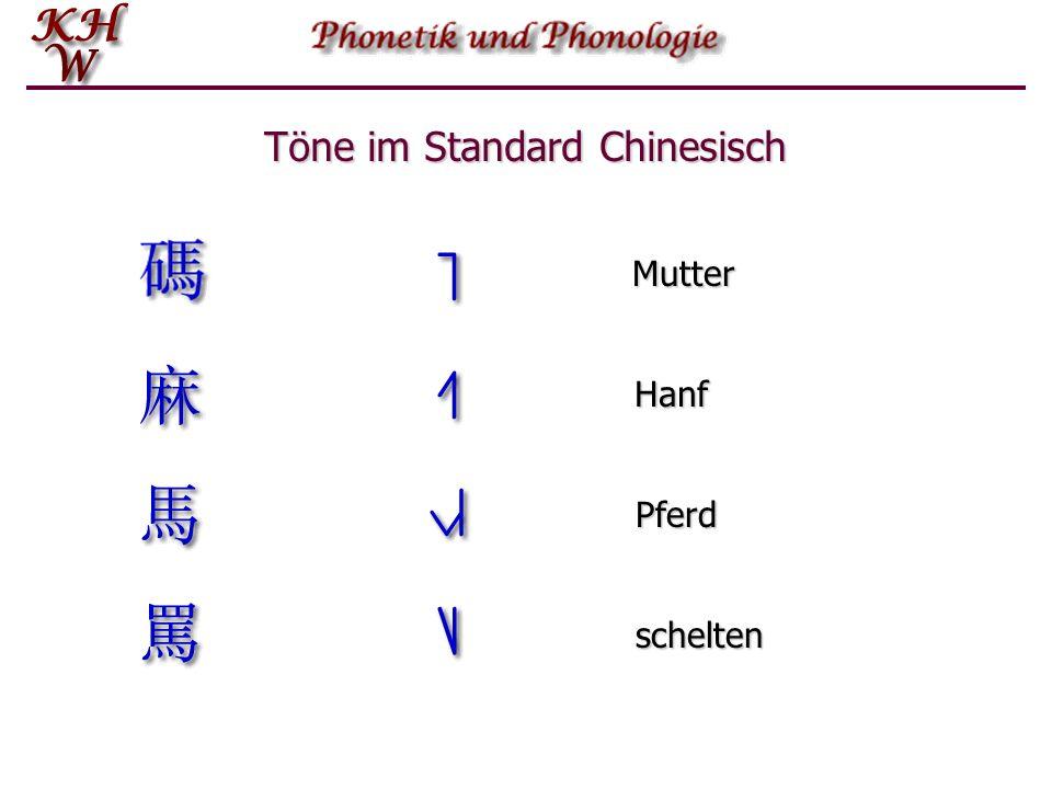 Phonations- prozess Einführung in die Phonetik und Phonologie   Der Phonationsprozess