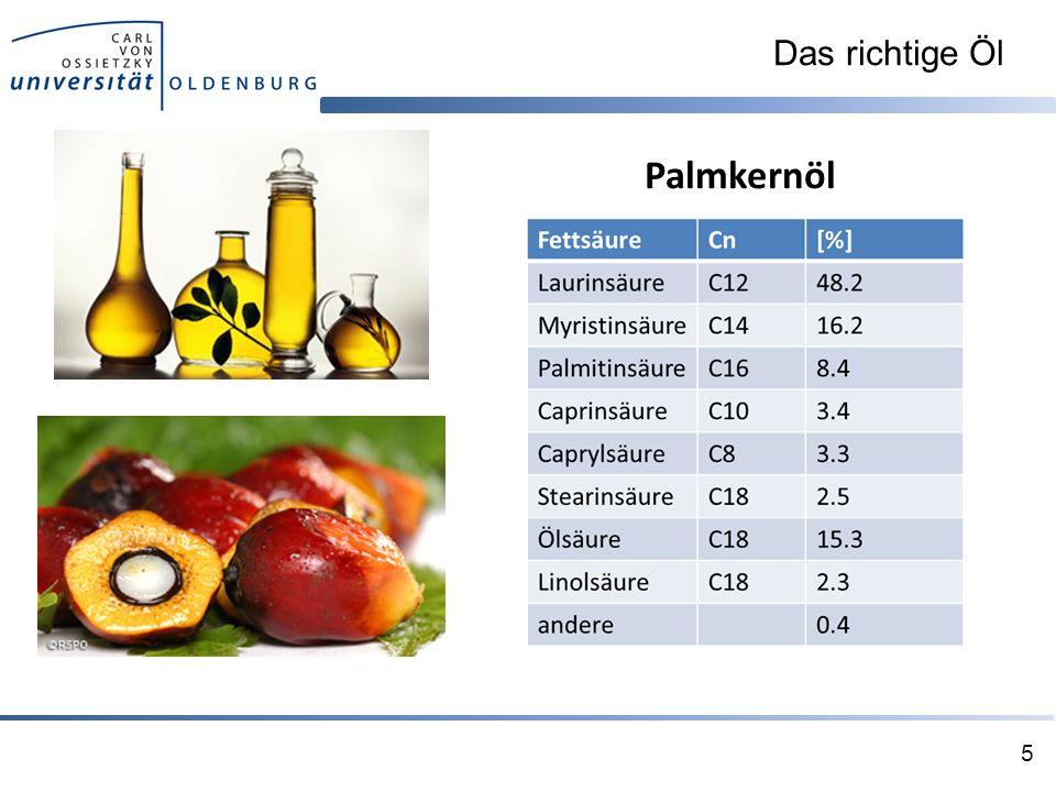 Das richtige Öl 5 Palmkernöl