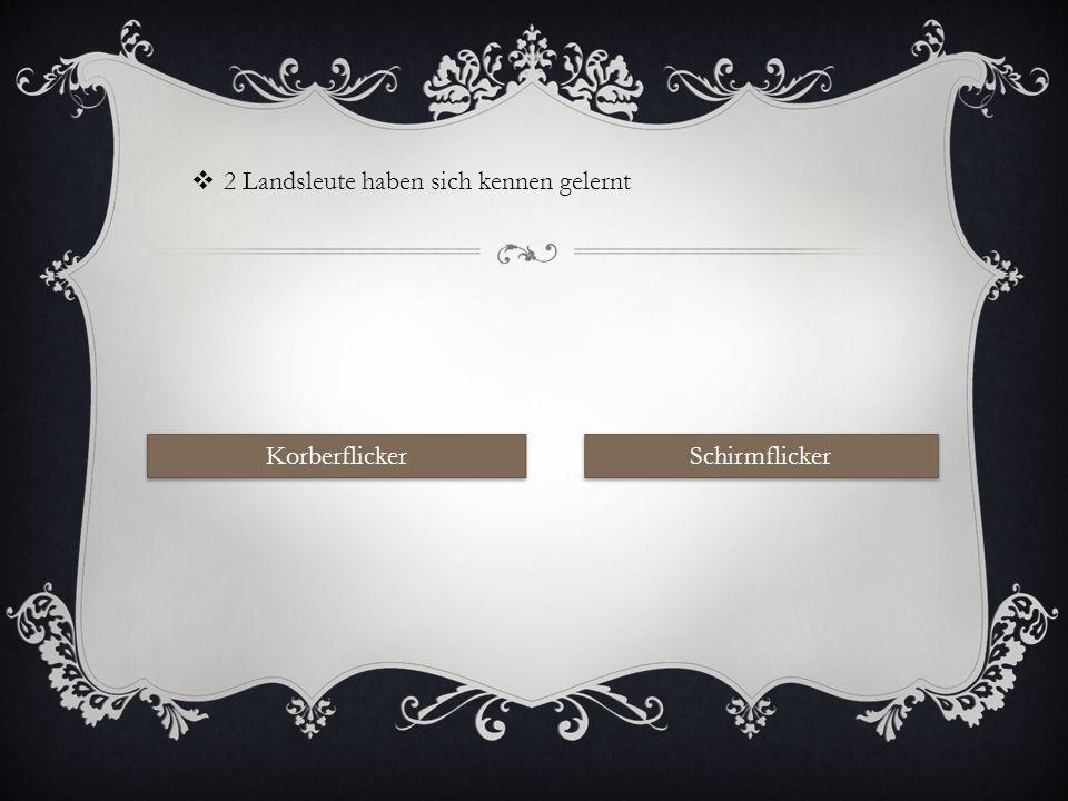 BEGRÄBNIS EINES SCHIRMFLICKERS Start