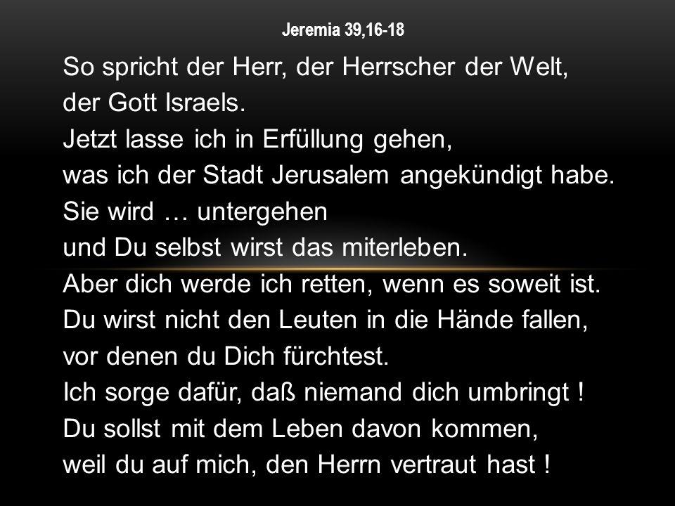 So spricht der Herr, der Herrscher der Welt, der Gott Israels. Jetzt lasse ich in Erfüllung gehen, was ich der Stadt Jerusalem angekündigt habe. Sie w