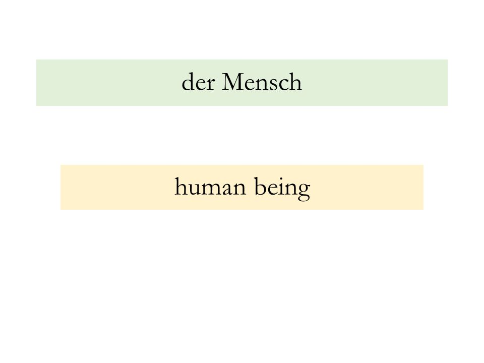 der Mensch human being