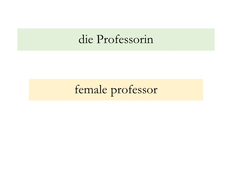die Professorin female professor