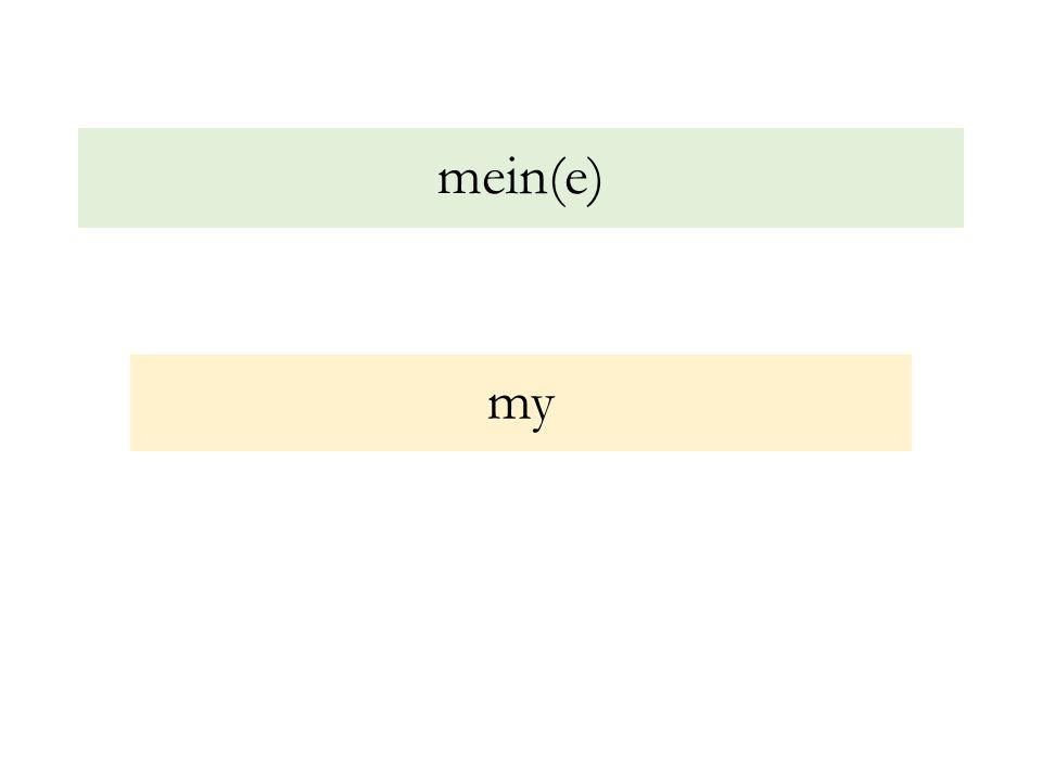 mein(e) my