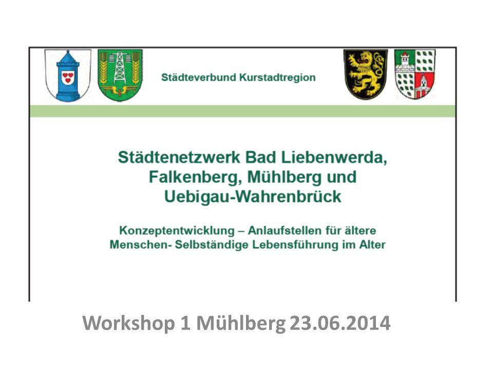 Städtenetzwerk Bad Liebenwerda, Falkenberg, Mühlberg, Uebigau- Wahrenbrück Workshop 1 Mühlberg 23.06.2014