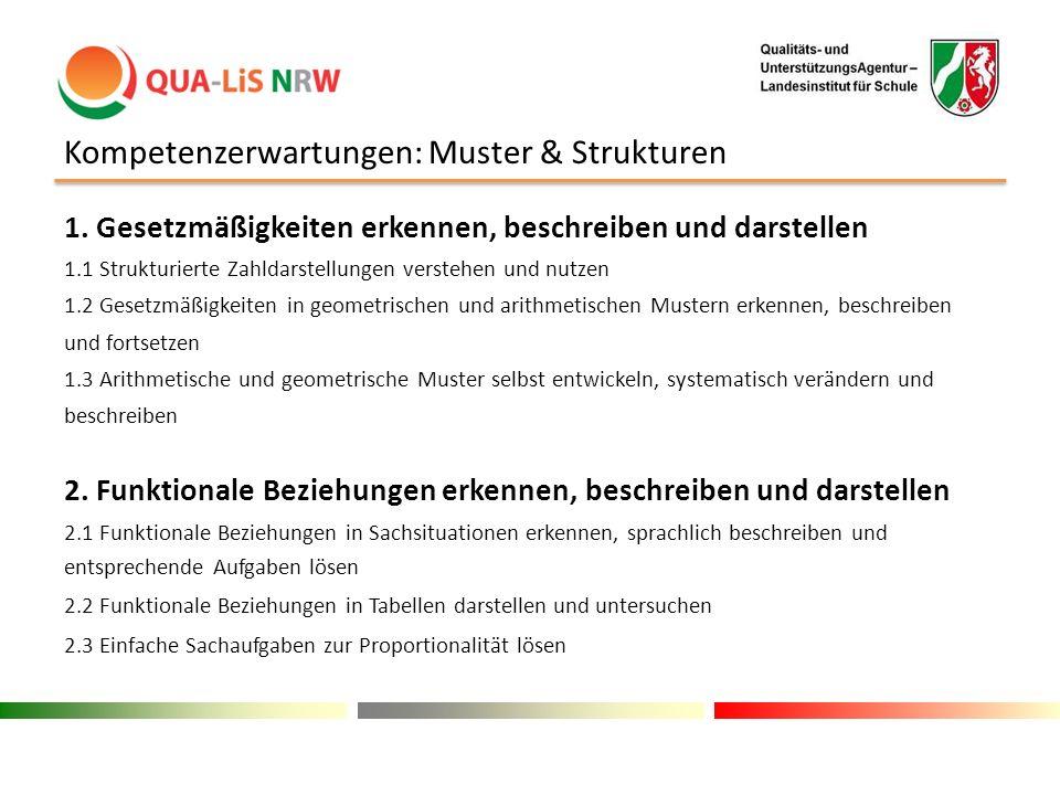 Kompetenzerwartungen: Muster & Strukturen 1. Gesetzmäßigkeiten erkennen, beschreiben und darstellen 1.1 Strukturierte Zahldarstellungen verstehen und