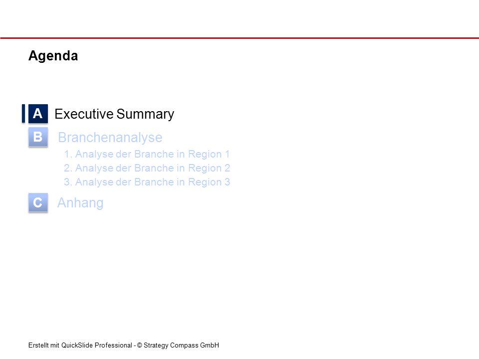 Erstellt mit QuickSlide Professional - © Strategy Compass GmbH Agenda Executive Summary Branchenanalyse 1.