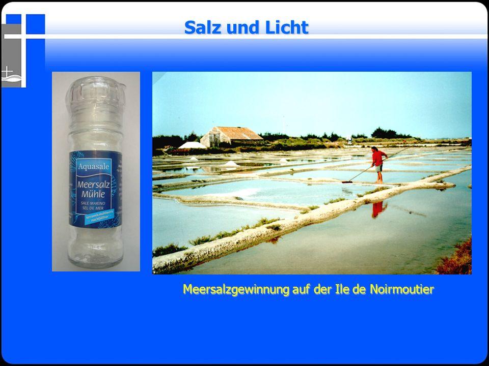 Meersalzgewinnung auf der Ile de Noirmoutier Salz und Licht