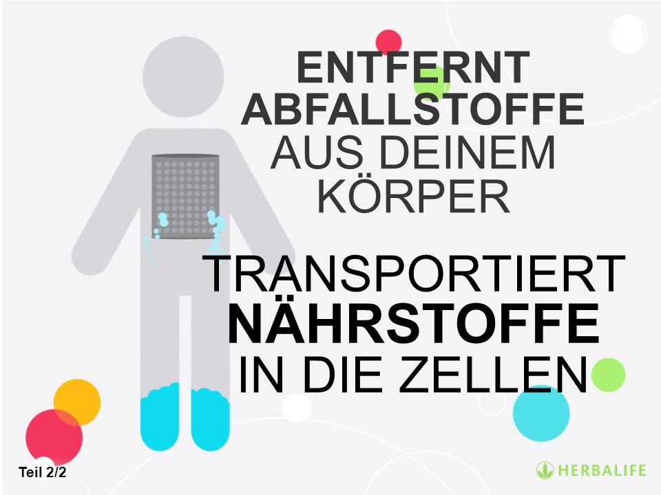 ENTFERNT ABFALLSTOFFE AUS DEINEM KÖRPER TRANSPORTIERT NÄHRSTOFFE IN DIE ZELLEN Teil 2/2
