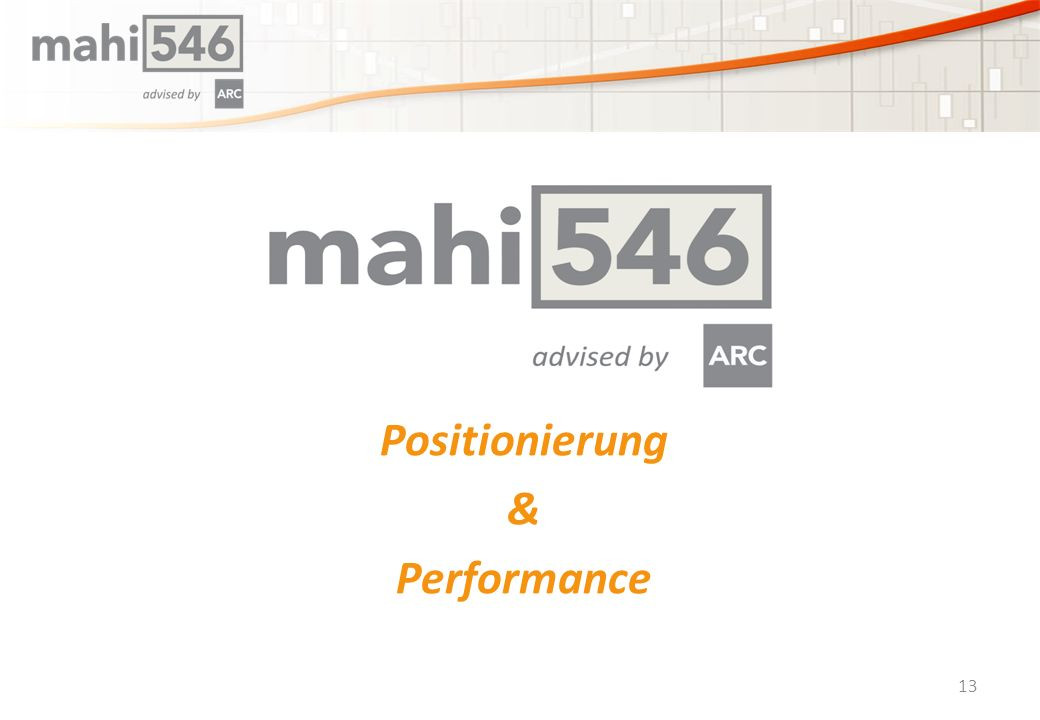 Positionierung & Performance 13