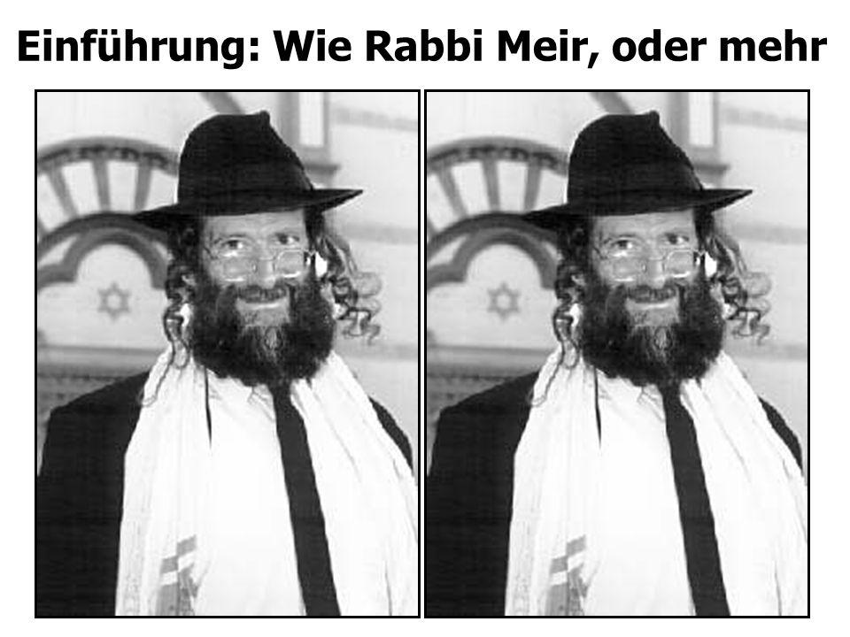 Einführung: Wie Rabbi Meir, oder mehr