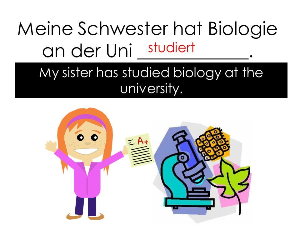 Meine Schwester hat Biologie an der Uni ____________.