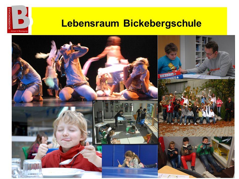 Lebensraum Bickebergschule B