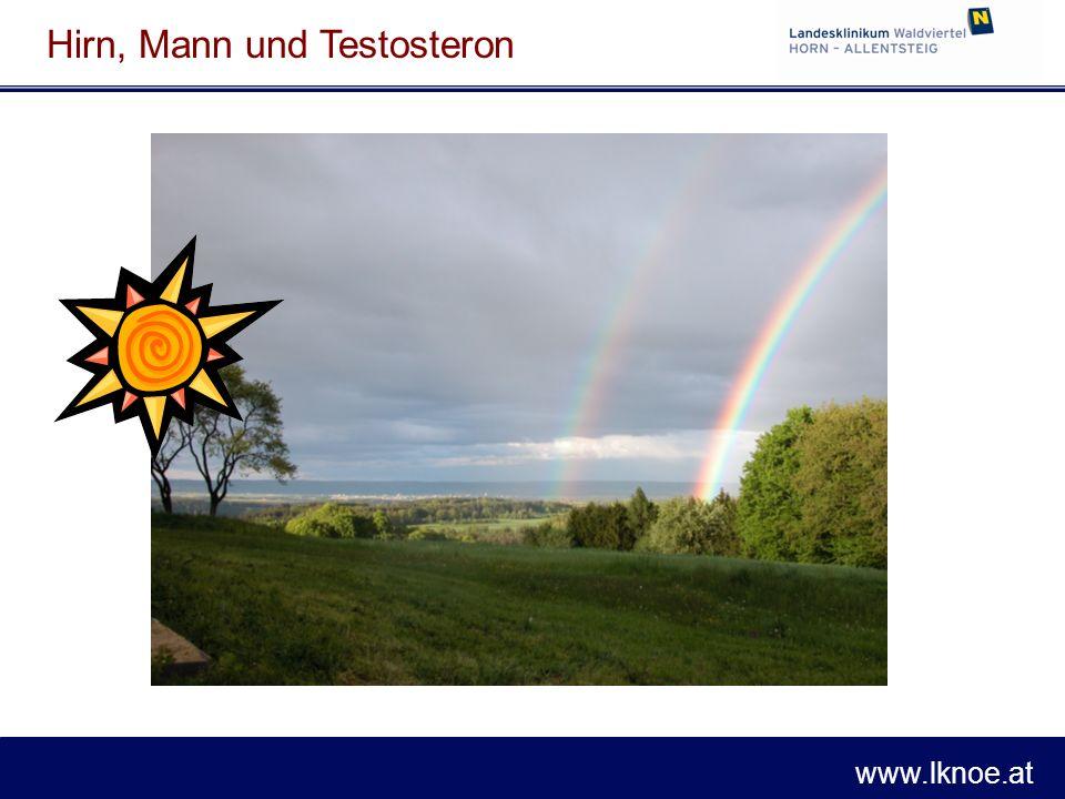 www.lknoe.at Hirn, Mann und Testosteron