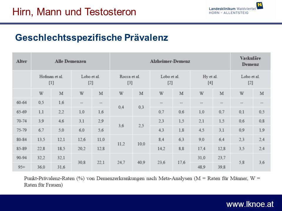 www.lknoe.at Hirn, Mann und Testosteron Aging Male.