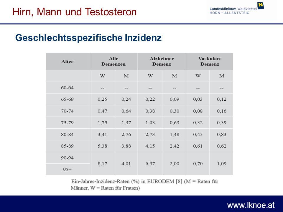 www.lknoe.at Hirn, Mann und Testosteron 1996: Protektiver Effekt postmenopausaler Hormon- substitutionstherapie für Demenz v.