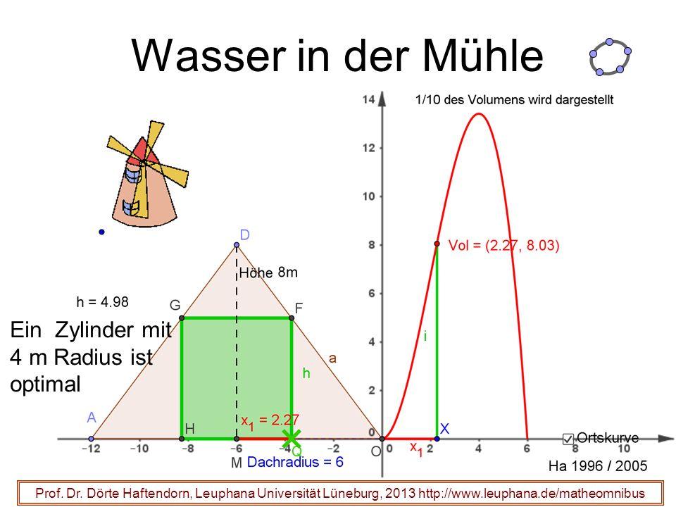 Wasser in der Mühle Prof. Dr.