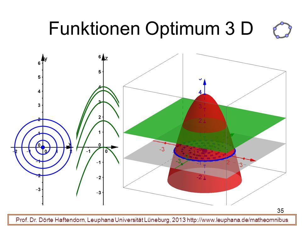 Funktionen Optimum 3 D Prof. Dr.