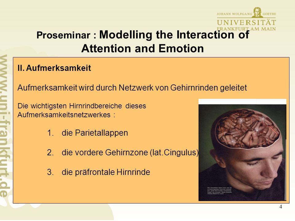 5 Proseminar : Modelling the Interaction of Attention and Emotion III.