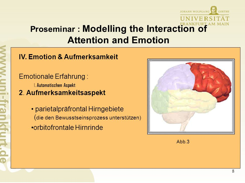 9 Proseminar : Modelling the Interaction of Attention and Emotion IV.