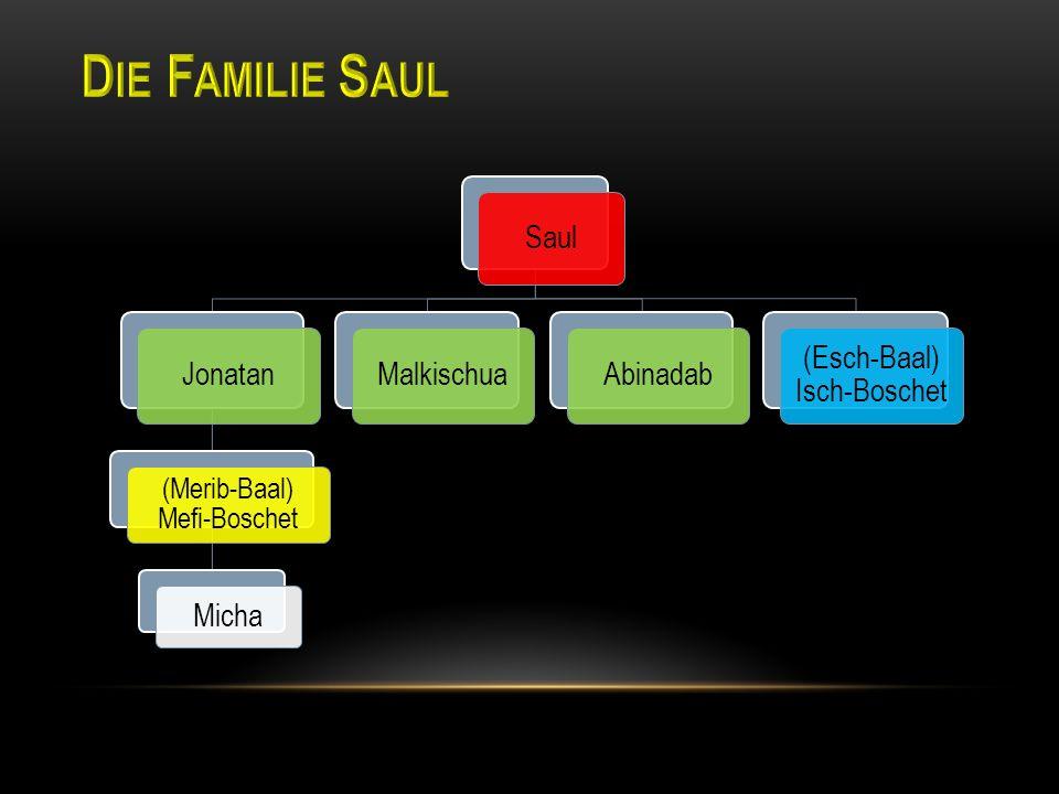 Saul Jonatan (Merib-Baal) Mefi-Boschet Micha MalkischuaAbinadab (Esch-Baal) Isch-Boschet