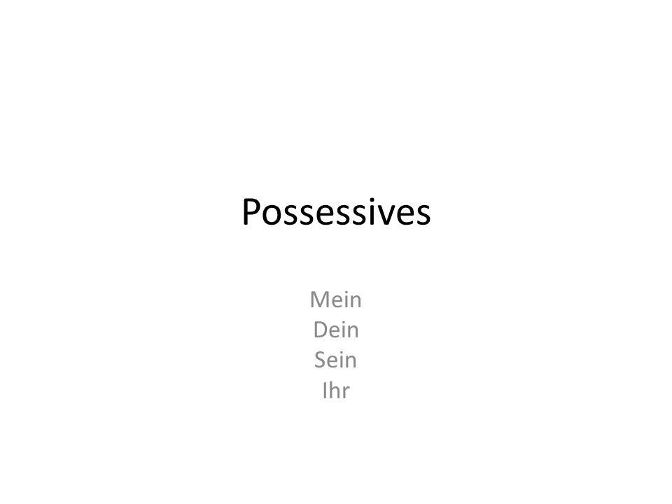 Possessives Mein Dein Sein Ihr