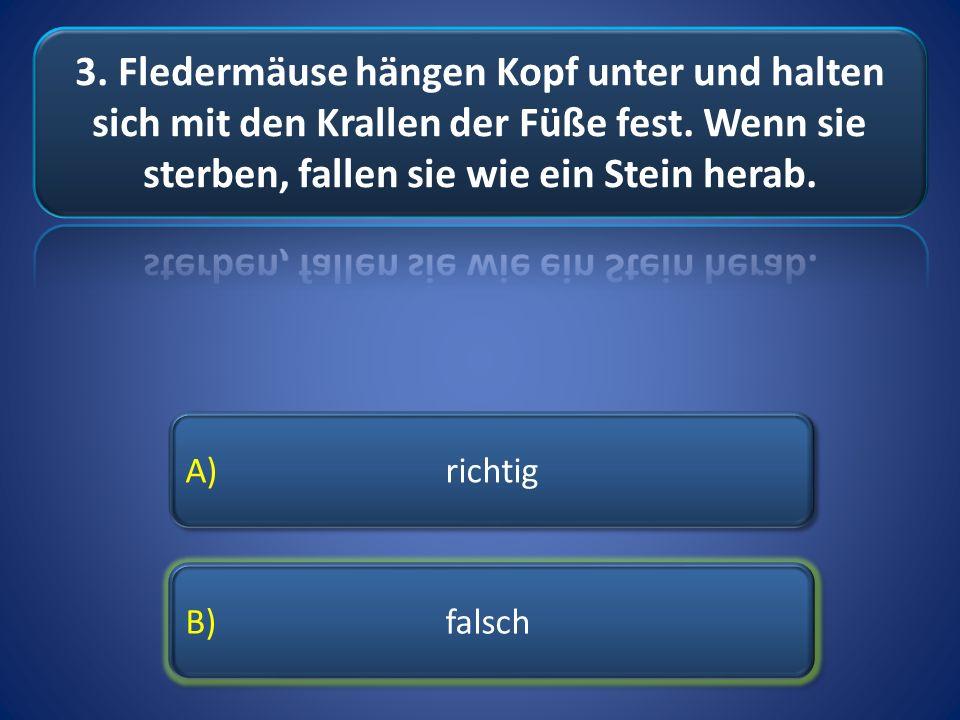 B) falsch A) richtig