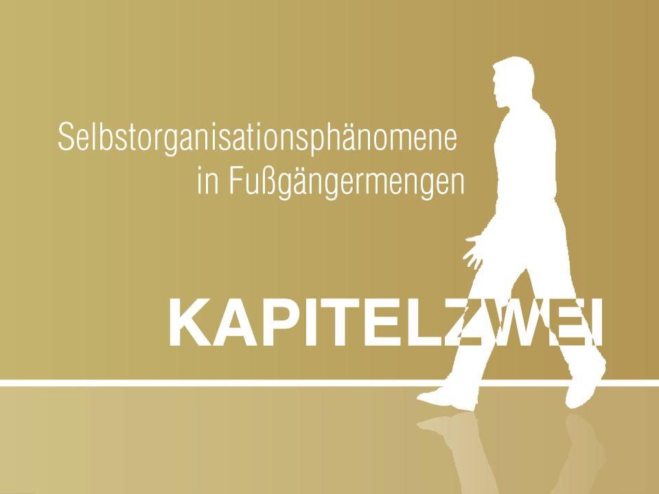 """Slide 17 """"Simulation des Verhaltens von Menschenmassen und ihre Anwendung auf Gebäudeevakuierungen Jörg Meister 23-05-2007 Fußgänger mit entgegengesetzter Laufrichtung sind nicht gleichverteilt über den Gehweg/Korridor, sondern trennen sich in Bahnen gleicher Laufrichtung auf."""