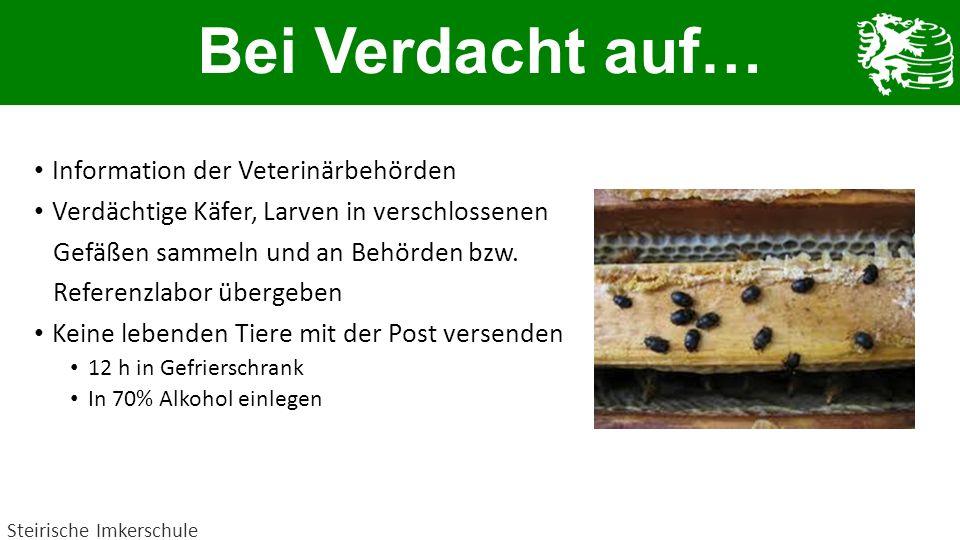 Bei Verdacht auf… Information der Veterinärbehörden Verdächtige Käfer, Larven in verschlossenen Gefäßen sammeln und an Behörden bzw. Referenzlabor übe
