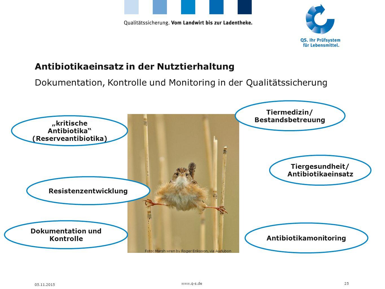 Antibiotikaeinsatz in der Nutztierhaltung Dokumentation, Kontrolle und Monitoring in der Qualitätssicherung 25www.q-s.de 05.11.2015 Foto: Marsh wren b