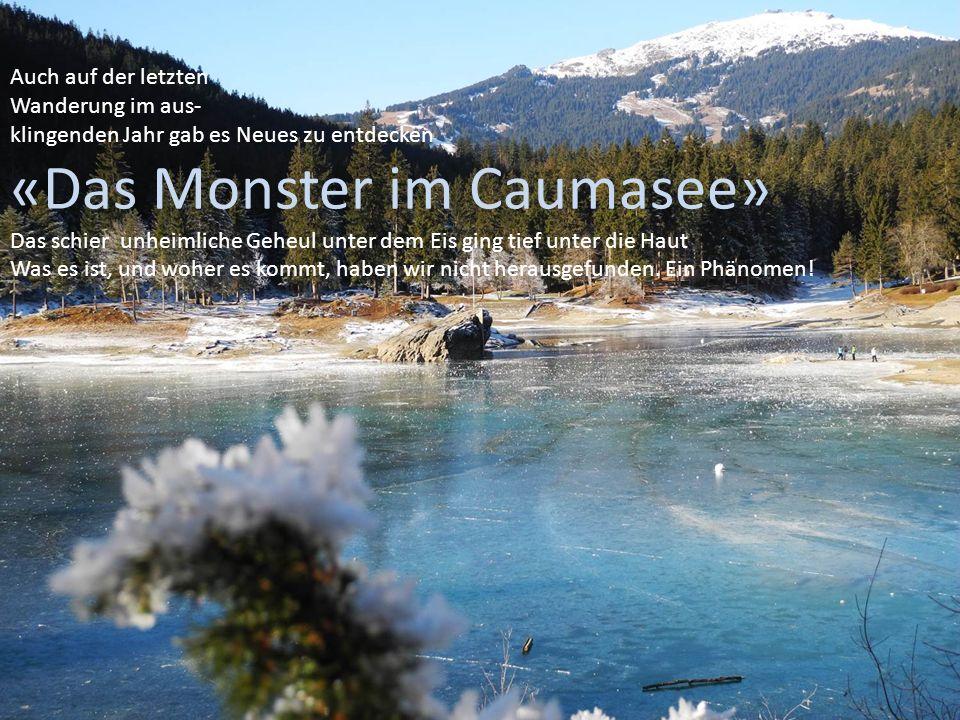Auch auf der letzten Wanderung im aus- klingenden Jahr gab es Neues zu entdecken «Das Monster im Caumasee» Das schier unheimliche Geheul unter dem Eis