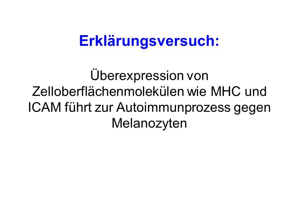 Erklärungsversuch: Überexpression von Zelloberflächenmolekülen wie MHC und ICAM führt zur Autoimmunprozess gegen Melanozyten
